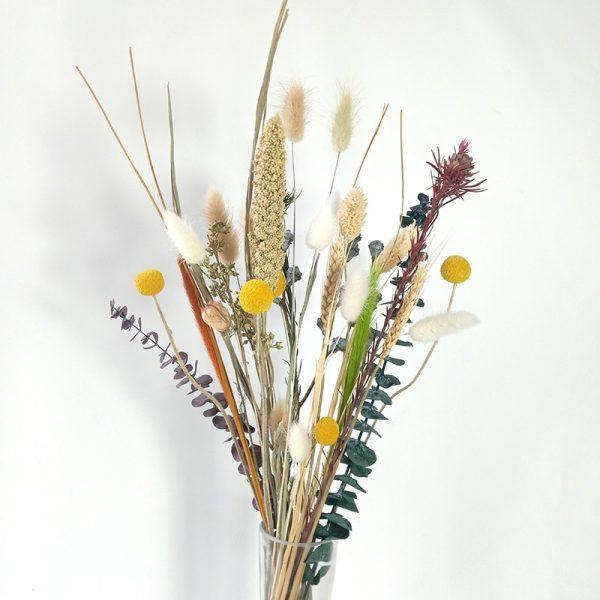 Dongli Paquet de fleurs séchées Véritable herbe naturelle Craspedia Bunny Tail Grass Préservée Plante Eucalypthus Bouquet Centrepieces Home Décor